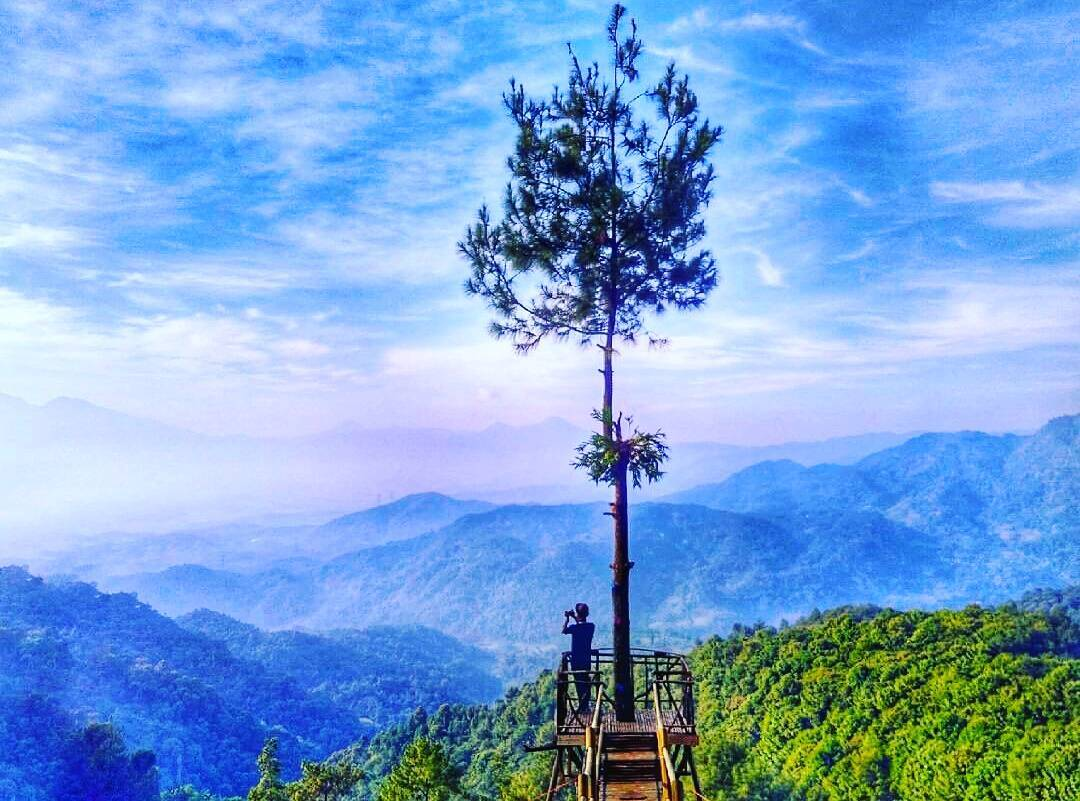 Wisata Alam Bogor cover