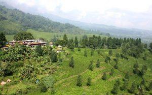 Wisata Alam Bogor  bunder