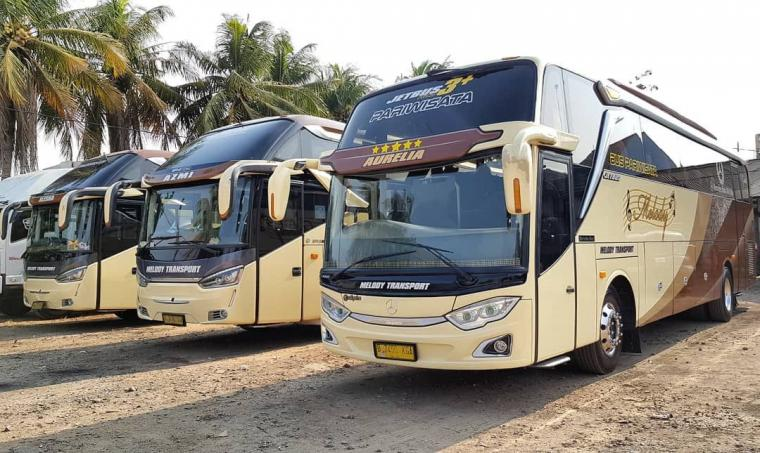 Sewa Bus Parwisata Bogor dua