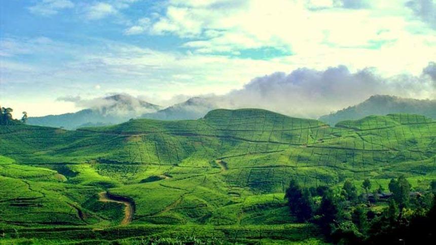 Gunung Mas Bogor