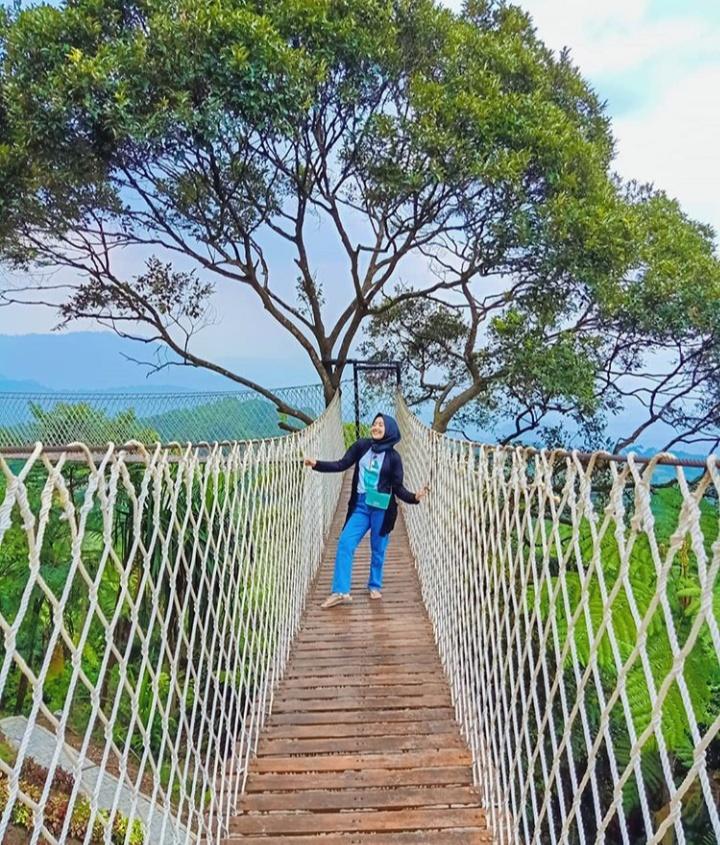 jembatan gantung bukit halimun